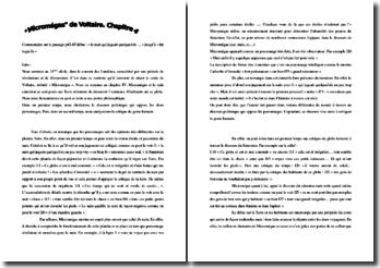 Voltaire, Micromégas, Chapitre 4, Extrait : commentaire