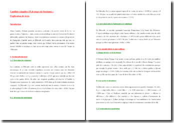 Voltaire, Candide, Le nègre de Surinam : commentaire