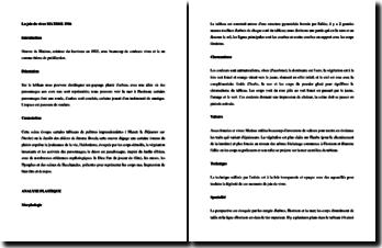 Matisse, La joie de vivre : analyse