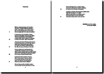 Baudelaire, Les Fleurs du Mal, La Chevelure (XXIII) : étude analytique