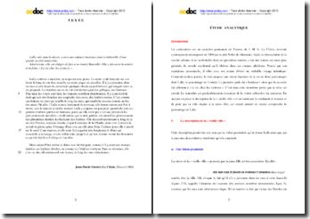 Le Clézio, Désert, Extrait : étude analytique