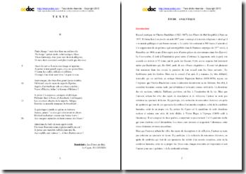 Baudelaire, Les Fleurs du Mal, Le Cygne, II (LXXXIX) : étude analytique