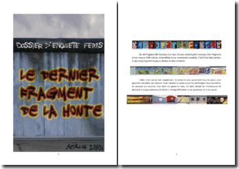 Dossier personnel d'enquête (Fémis 2010) - Le dernier fragment de la honte