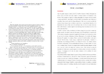 Emile Zola, Au Bonheur des Dames, Chapitre X, Extrait : étude analytique