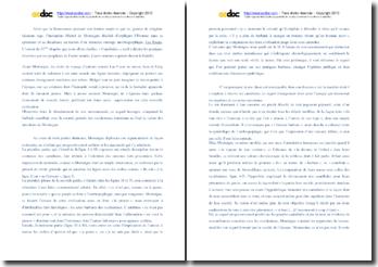 Montaigne, Essais, Chapitre XXXI, Livre 1 , Des Cannibales : commentaire