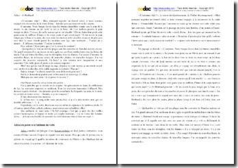 Rimbaud, Adieu : commentaire