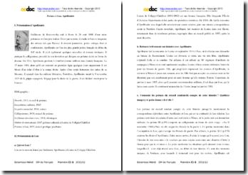 Guillaume Apollinaire, Poèmes à Lou : analyse du recueil