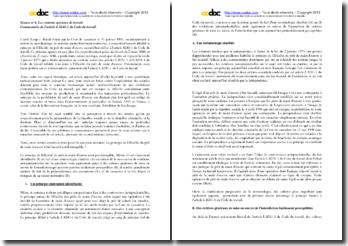 L'illicéité du prêt de main d'oeuvre : commentaire de l'article L.8241-1 du Code du travail