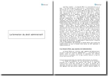 Précis de droit administratif - P-L. Frier, J. Petit: La formation du droit administratif