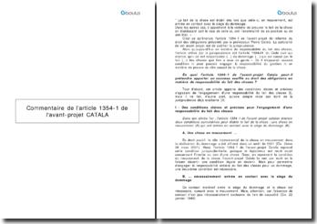 Commentaire de l'article 1354-1 de l'avant projet CATALA