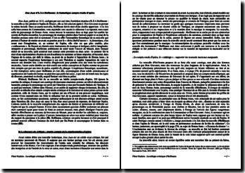 E.T.A Hoffmann, Don Juan : commentaire