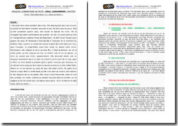 Zola, L'Assommoir, Chapitre 13, Extrait : commentaire composé