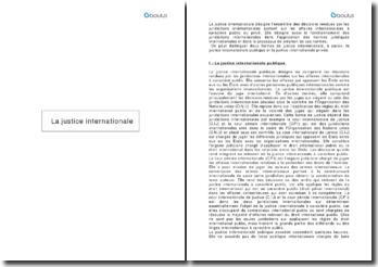 La justice internationale publique et privée