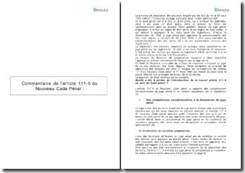 Commentaire de l'article 111-5 du Nouveau Code pénal