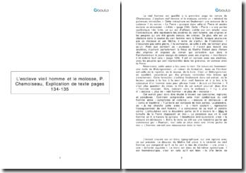 L'esclave vieil homme et le molosse, pages 134-135 - P. Chamoiseau
