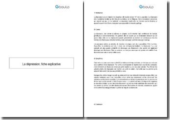 La dépression : causes et symptômes (Belgique)