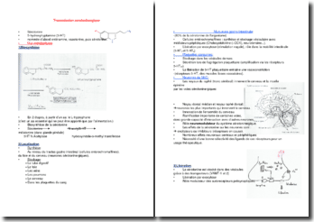 Transmission serotoninergique