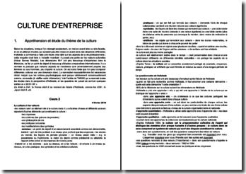 Culture d'entreprise : Appréhension et étude du thème de la culture