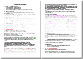 Constitution des nerfs crâniens