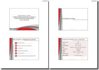 Système d'information ressources humaines, un vecteur de changement organisationnel : cas de la société ABC