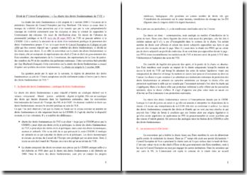 La charte des droits fondamentaux de l'Union européenne et le régime de protection des droits fondamentaux au sein de l'Union européenne