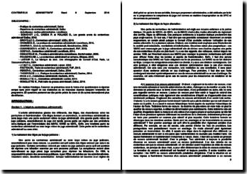 Contentieux administratif : les juges, le recours et le procès