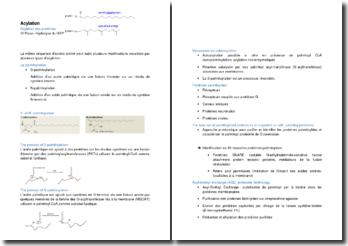 L'acylation des protéines