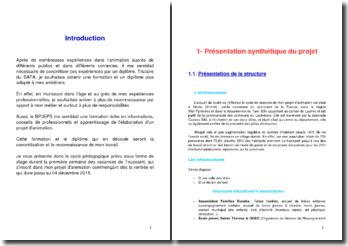 Projet d'animation - Cycle pédagogique (BPJEPS)