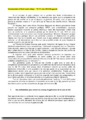 Tribunal des conflits, 13 juin 2013 - Décision Bergoend