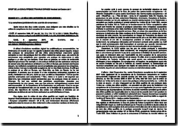Ensemble de commentaires d'arrêts et notes détaillées en droit de la concurrence français et européen