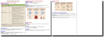 Les composants chimiques et biochimiques des cellules