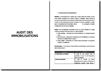 L'audit et l'amortissement des immobilisations
