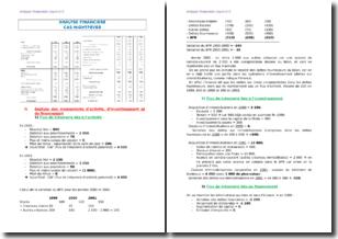 Analyse financière : le cas de l'entreprise Nightfever