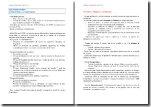 Analyse financière : introduction à la comptabilité