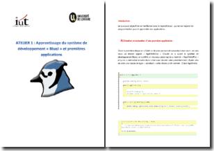 Apprentissage du système de développement BlueJ et premières applications