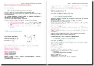 Organisation et structure des acides nucléiques