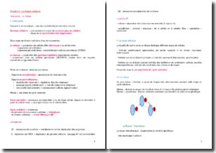La division cellulaire : la mitose et la méiose