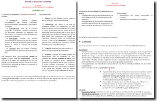 Organisation et administration d'entreprise