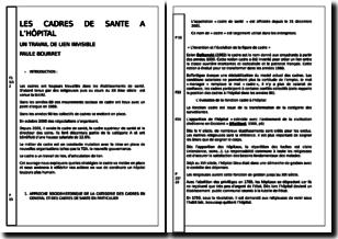 Les cadres de santé à l'hôpital : un travail de lien invisible - Paule Bourret (2006)