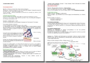 Cours de biologie : la communication cellulaire