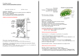 Physiologie végétale : nutrition carbonée et photosynthèse oxygénique