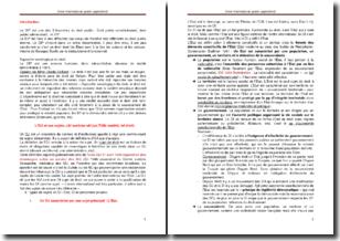 Cours de droit international public approfondi