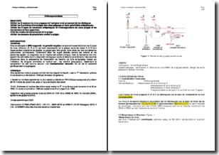 Virologie systématique - Les orthomyxoviridae