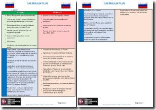 Analyse SWOT d'une chaîne de boulangeries françaises implantée en Russie (Moulin Plus)