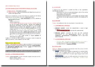 La formation des obligations internationales : la coutume