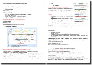 Notion de base de techniques-stratégies d'analyse de l'ADN
