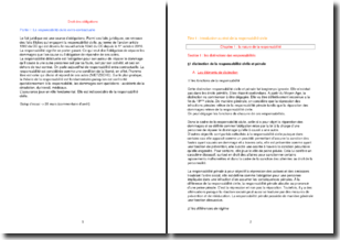 Droit des obligations - La responsabilité civile extra-contractuelle
