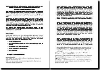 Bref commentaire de la Déclaration des Nations Unies sur les Peuples autochtones et la Convention n 169 de l'OIT