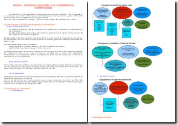 Approche structurelle de l'Organisation Internationale