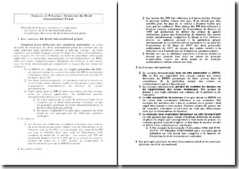 Sources et Principes Généraux du Droit International Pénal
